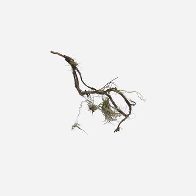FlussSiedler Fotoprint auf Alu Dibond 40x40cm